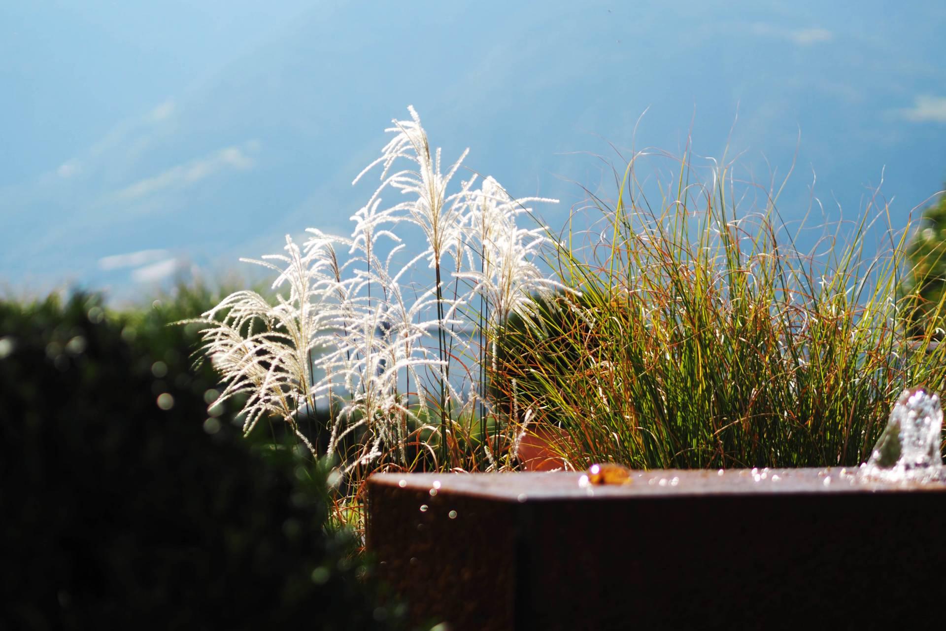 south tyrol howenwart hotel