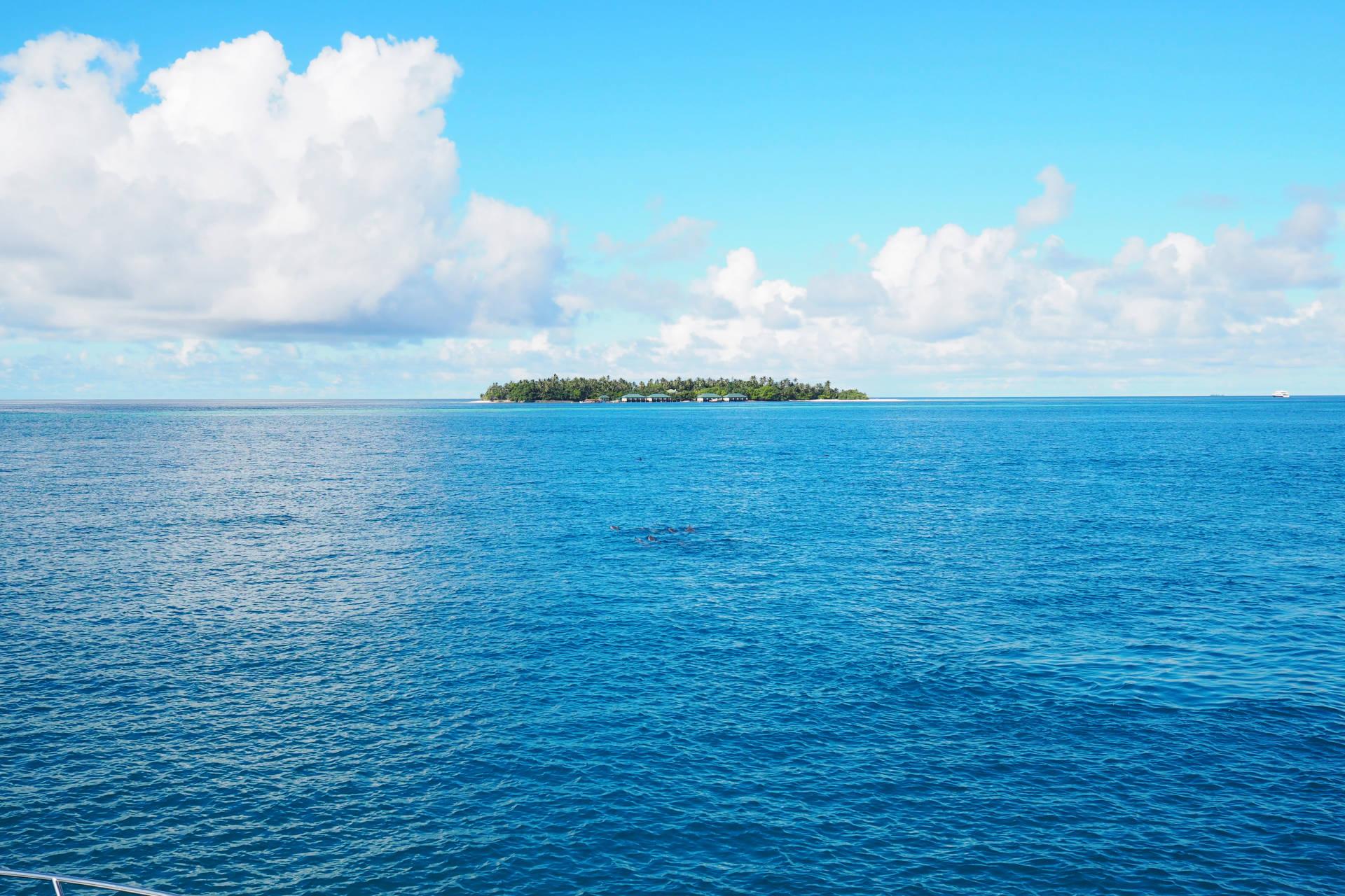 the maldives visitors guide