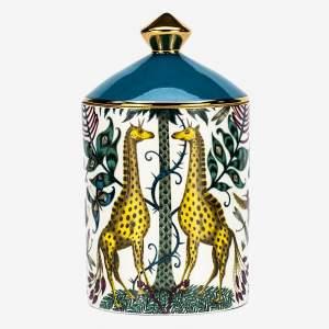 Kruger Candle
